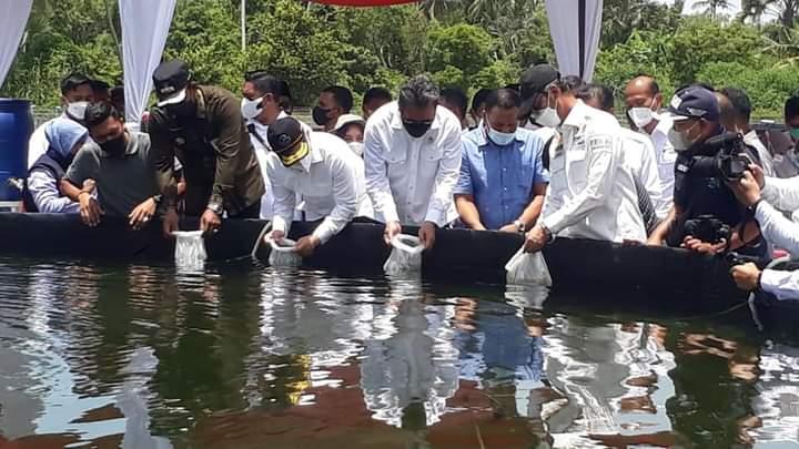 Tahun Depan, Aceh Timur Miliki 500 Hektare Tambak Udang